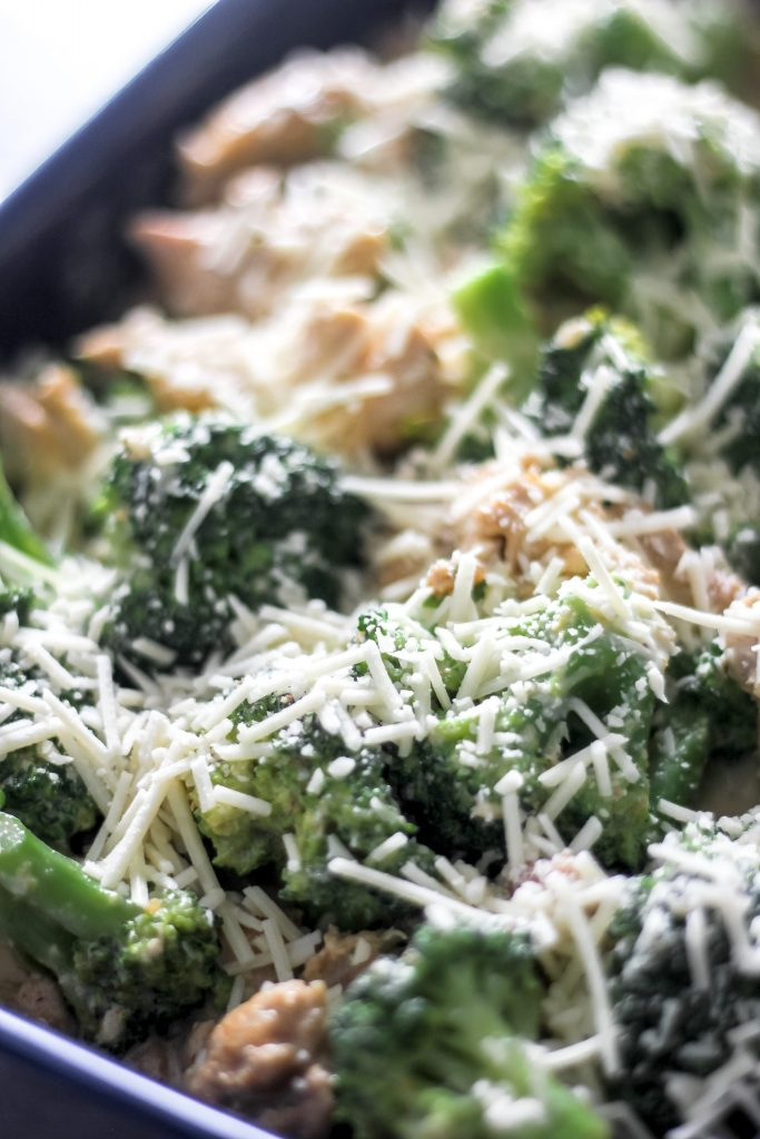Chicken and Broccoli w/ Alfredo Sauce and Cheese