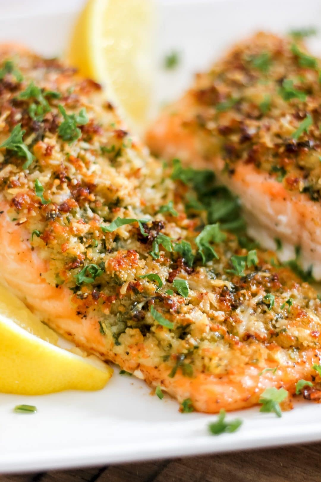 Parmesan Herb Crusted Salmon on White Plate